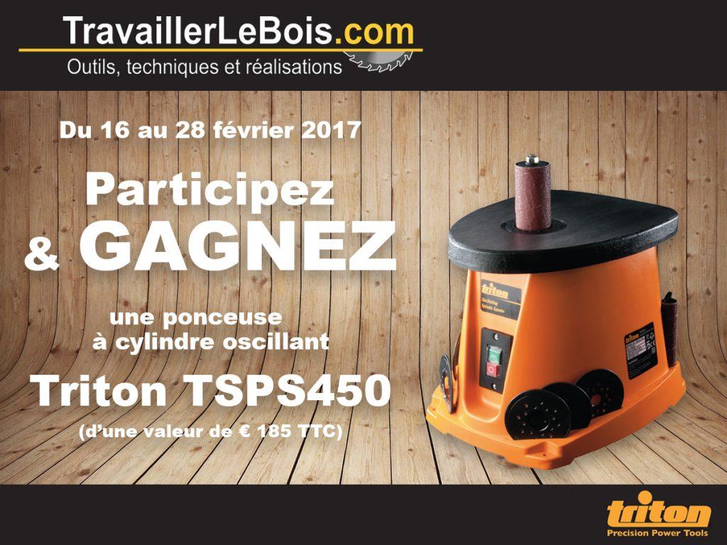 Concours ponceuse à cylindre oscillant Triton TSPS450